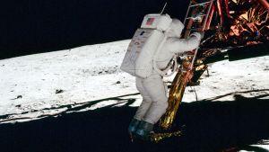 """Edvin """"Buzz"""" Aldrin astumassa Kuun kamaralle."""
