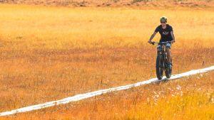 Maastopyöräilijä ajaa pitkospuita pitkin.
