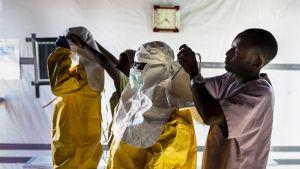 Lääkärit pukevat ylleen suojapukuja Bunian ebolan hoitokeskuksessa.