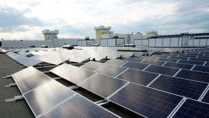 Oulun Energia toimittaa yhden Suomen suurimmista aurinkovoimaloista Tuurin Kyläkauppaan.