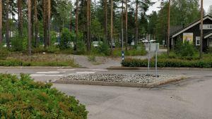 Raiskaus tapahtui kuvassa näkyvässä metsässä.