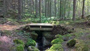 Uusi puinen silta asennettuna metsäpolun varrelle.