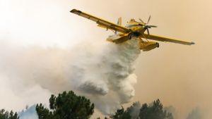 Metsäpalon sammutusta Casais de Sao Bentossa Portugalissa.