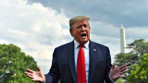 Donald Trump puhumassa lehdistölle Washingtonissa 24. heinäkuuta.