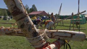 Partiolaiset rakentavat koivuista aitaa leirillä.