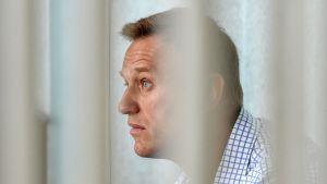 Aleksei Navalnyi oikeuden kuultava 24. heinäkuuta Moskovassa.