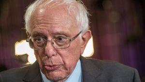 Demokraattipoliitikko Bernie Sanders.