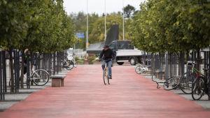 Mies ajaa punaisella pyöräbaanalla Oulun keskustassa.