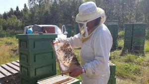 Mehiläistarhaaja, Hunajasato