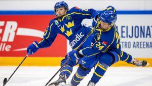 Ruotsin naisten jääkiekkomaajoukkue