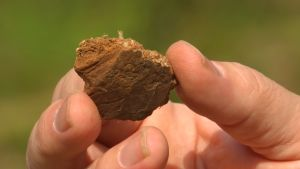Asbesti kivikausi asbestikeramiikka arkeologiset kaivaukset Sokli esihistoria saviastia