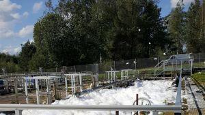Kuopion Veden jätevedenpuhdistamolle tuli maanantaina outoa vaahtoavaa ainetta.