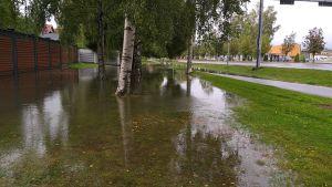 Vettä kaduilla ja nurmikolla.