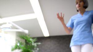 hammaslääkärikoira nipsu kävelee kameraa kohti