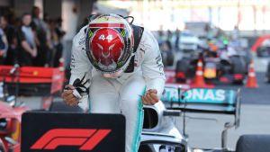 Lewis Hamilton, Sotshi 2019