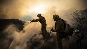 Palomiehet sammuttavat maastopaloa Sylmarin ja Santa Claritan alueella Kaliforniassa.