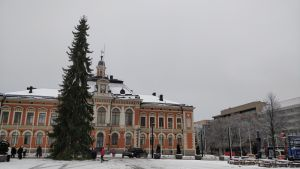 Kuopion torin joulukuusi marraskuussa 2019.