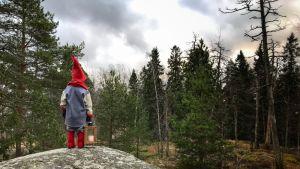 Tonttu lyhdyn kanssa metsässä