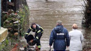 Palomies pelastaa kanoja tulvineella kadulla Espanjan Ponferradassa