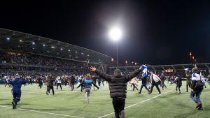 Suomen fanit