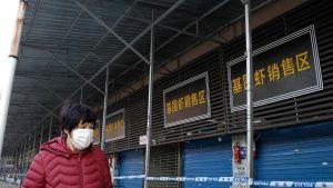 Suljettu kalatukku Wuhanissa 12. tammikuuta.