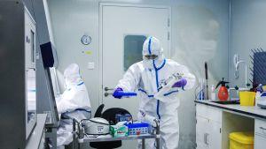 Kiinalaisessa laboratoriossa työskennellään.