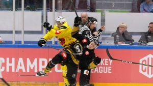 CHL-ottelu Kärpät vs SC Bern. Simon Moser / Karvinen Otto