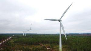 Kuvassa on tuulimyllyjä Hangossa tammikuussa 2018.