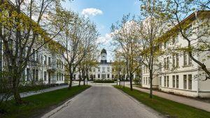 Kuva Pitkäniemen vanhoista rakennuksista