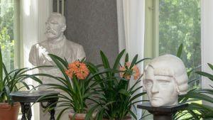 P.E. Svinhufvudin ja Ellen-vaimon rintapatsaat Kotkaniemen salissa, taustalla kukkivia kliivioita.