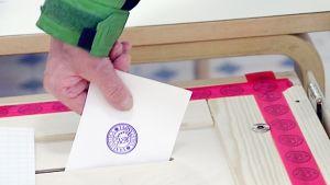 Äänestyslippua tiputetaan vaaliuurnaan.