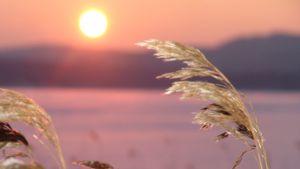 Auringon nousua Päijänteellä.
