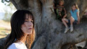 Kuva elokuvasta The Tree.