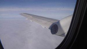 Lentoyhtiö Wingon kone ilmassa.