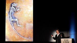 Mies esittelee fossiilin kuvaa