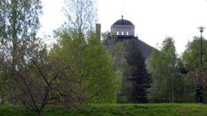 Pielisjoen linna pilkottaa puiden takaa.