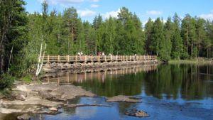Kävelysilta Lieksanjoen varressa Ruunaalla.