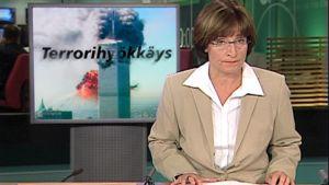 Kuva YLEn TV-uutisista ja taustakuvasta