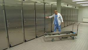 Lääkäri ruumishuoneella.