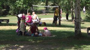 Lastenpäivä Viikinsaaressa. Viikinsaari, perhe, piknik, lastenpäivä, puisto