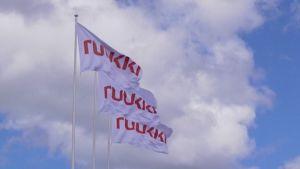 Ruukin lippuja