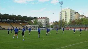 Tammelan stadion.