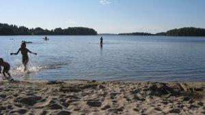 hiekkarantaa, vettä ja uimareita