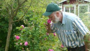 Lauri Korpijaakko haistelee ruusunkukkaa