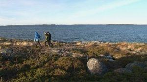 Ihmisiä kävelemässä saaristomaisemassa suunnitellun Selkämeren kansallispuiston alueella.
