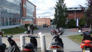 Kuvassa Lappian Tornion kampusaluetta.