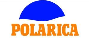 Polarican logo.