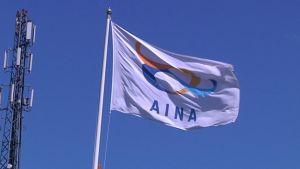 Aina Groupin lippu