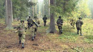 Sotilaat juoksevat havumetsässä.