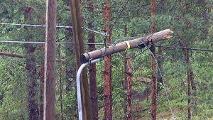 Ukkosmyrskyn katkaisema sähkötolppa